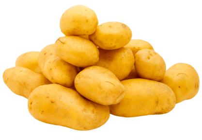 Gratin de pommes de terre recettes - Comment conserver des pommes de terre coupees ...