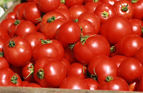 Velout tomates basilic recettes - Comment couper une tomate en cube ...